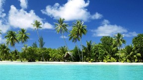 deniz,doğa,gökyüzü,ağaç