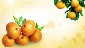 meyve,portakal
