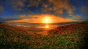 doğa,ağaç,deniz,günbatımı