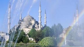 istanbul,cami,ağaç,şehir, sultan ahmet