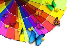 renkli,kelebek