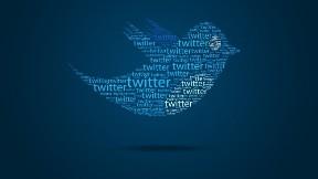 twitter,logo,sosyal ağ