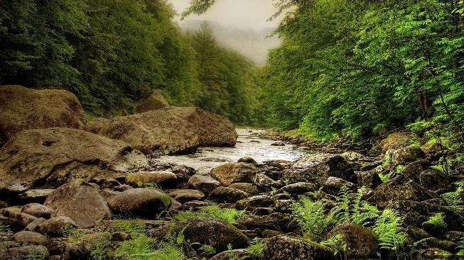 Nehir Duvar Kağıdı