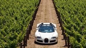 veyron,bugatti,cabrio,grand sport