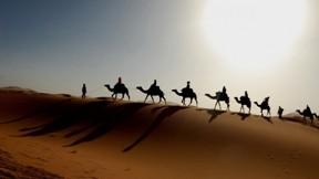 çöl,doğa,gökyüzü,güneş,deve