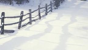 kar,kış,doğa