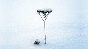 kar,kış