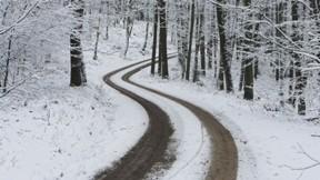 kar,yol,orman,kış