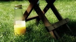 çimen,portakal,yaz,masa