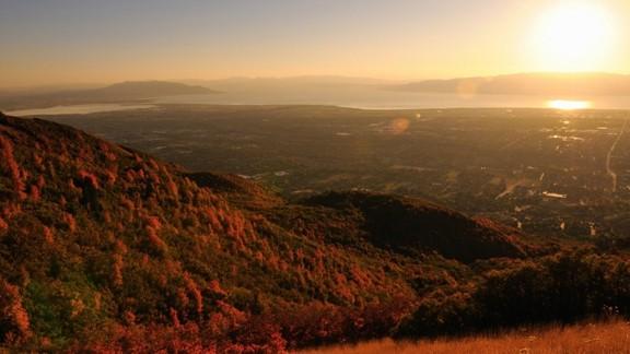Günbatımı Kızıl Orman Manzarası