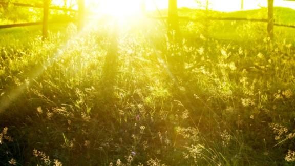 Süzülen Yaz Güneşi