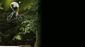bisiklet,akrobasi,ağaç