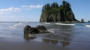 deniz,doğa,kumsal,kayalık,ada,ağaç