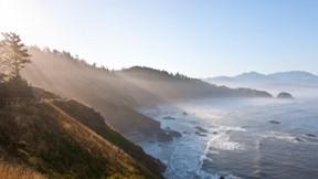 deniz,doğa,orman,sahil,güneş