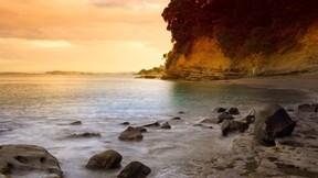 doğa,plaj,ağaç,deniz,günbatımı