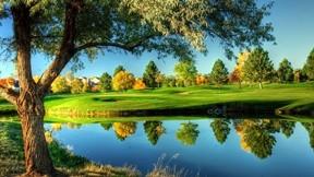 golf,saha,göl,ağaç