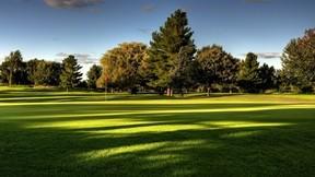 golf,saha,ağaç,güneş