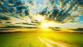 günbatımı,bulut,hdr,doğa,çimen,yol