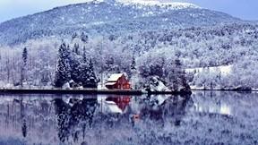 ev,göl,orman,ağaç,kar,dağ