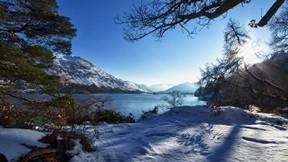 kış,orman,güneş,gökyüzü,ağaç,göl