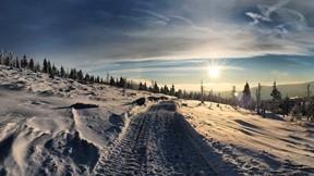 kar,ağaç,yol,güneş,gökyüzü