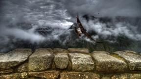 carcara,kuş,gökyüzü,bulut