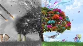ağaç,soyut,doğa