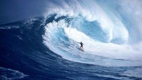 sörf,deniz,dalga