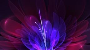soyut,şekil,çiçek