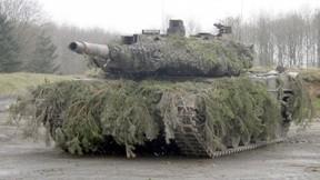 leopard,tank,askeri taşıt,orman,yol