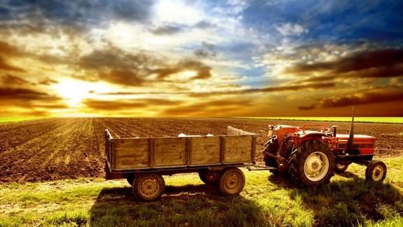 Traktör ve Manzara