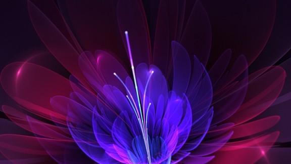 İllüstrasyon Çiçek