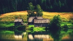 göl,ev,manzara,orman,ağaç