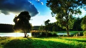 hdr,ağaç,doğa,göl,çimen,bulut