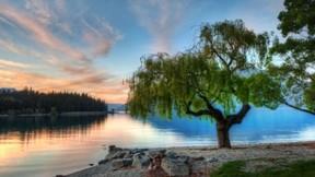 göl,hdr,ağaç,doğa,orman,gökyüzü