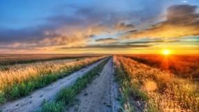 hdr,doğa,günbatımı,ova,bitki,gökyüzü