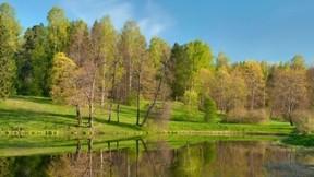 ilkbahar,ağaç,göl,güneş