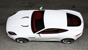jaguar,c-x16