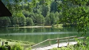artvin,karagöl,göl,orman,güneş
