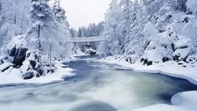 nehir,doğa,kar,kış,ağaç,köprü