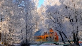 kış,ağaç,kar,ev,güneş,orman
