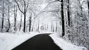 yol,kış,ağaç,kar