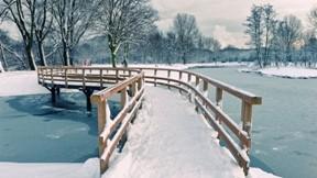 kar,kış,nehir,köprü,buz,ağaç