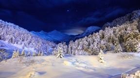 kış,kar,ağaç,gökyüzü,gece,orman,dağ