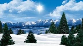 kış,kar,ağaç,güneş,gökyüzü,dağ