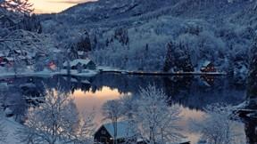 göl,kış,ağaç,orman,ev