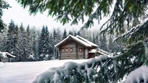 kış,dağ,ağaç,ev,kar,orman