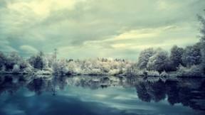 gece,kış,göl,orman,gökyüzü