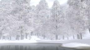 kış,nehir,ağaç,orman,kar
