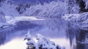 kış,kar,ağaç,nehir